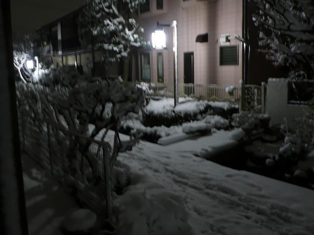 22日の雪の日